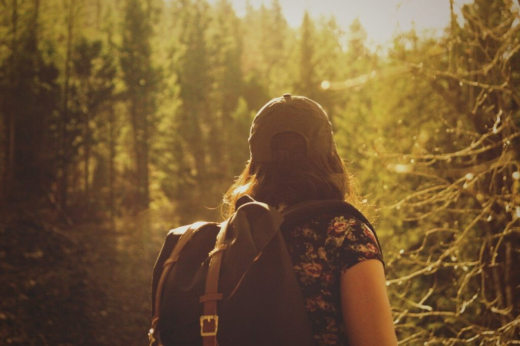 hiker, hiking, nature